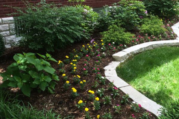 Garden Care 2